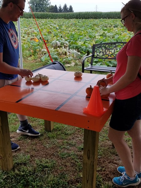 Students learn about pumpkins and farming.