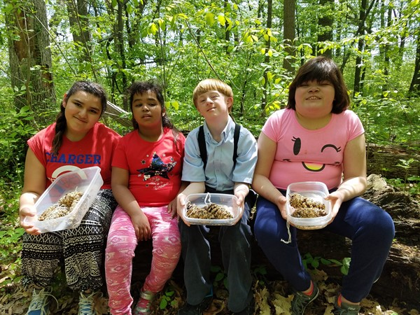 These students made bird feeders and hung them in the woods along the trails.
