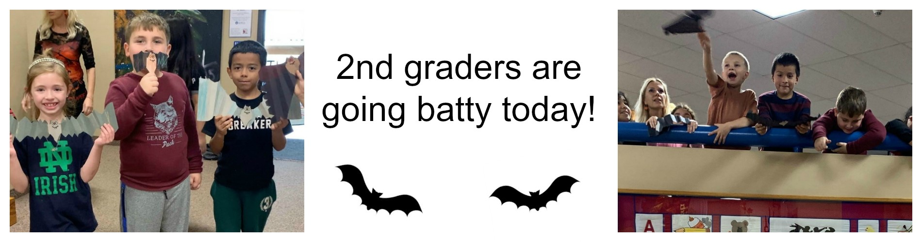 2nd graders are going batty today.